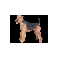 Airedale Terrier sticker 7cm