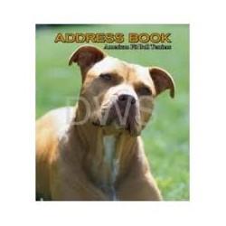 American Pitt Bull Terrier...