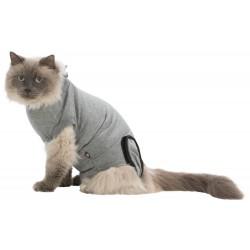 Operatie-Hesje voor Katten