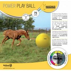 Maximus Power Play Ball 75cm